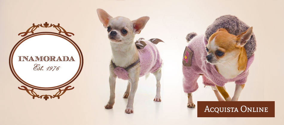 Fashion Clothes For Pets