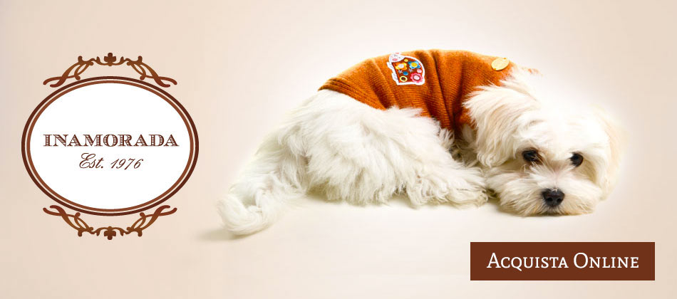 Stylish clothing for stylish dogs